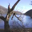 芦ノ湖 秘密 2