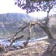 芦ノ湖 秘密 1