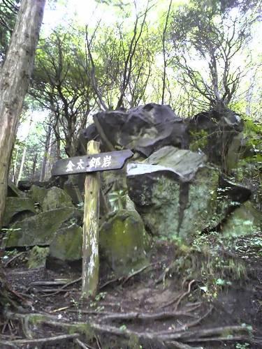 金太郎岩 1